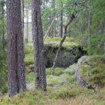 schweden-111