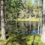 schweden-161
