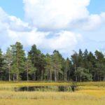 schweden-36
