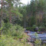 schweden-49